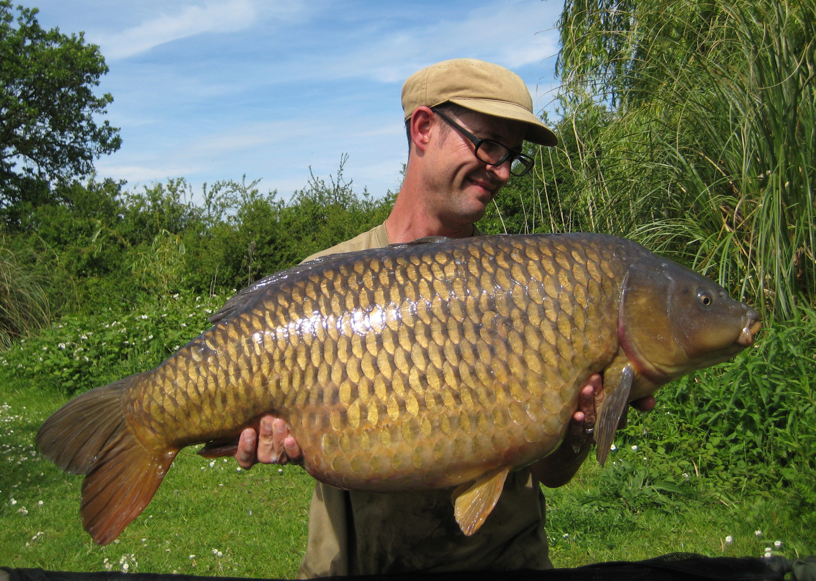 fryerning nick marsh carp